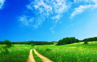 blue_sky_and_flowers_from_the_path_between_highdefinition_picture